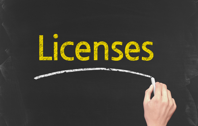 South Dakota Business License