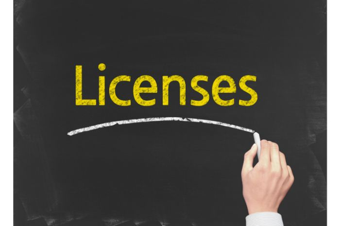 New Mexico LLC Business Licenses